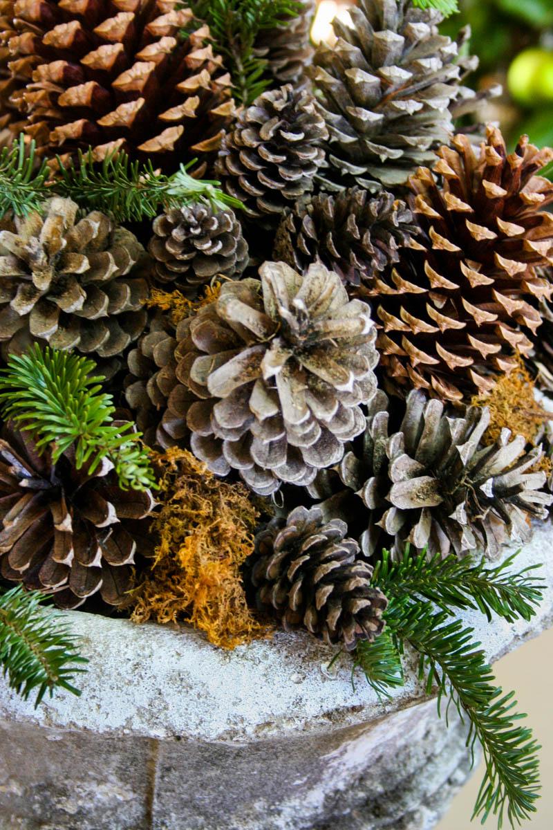 Pine Cone Planter