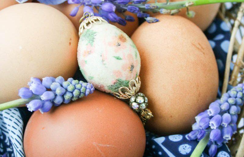 Easter egg Hunt-The Bitter Socialite